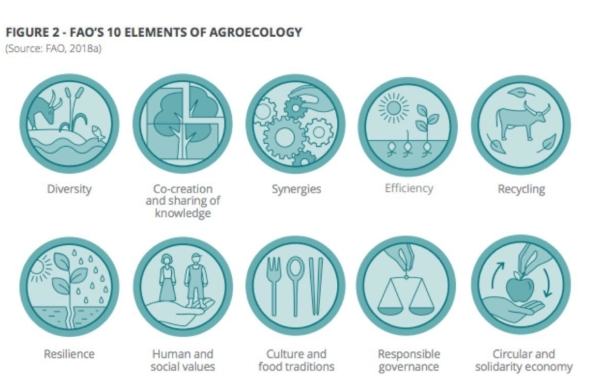 agroecology1