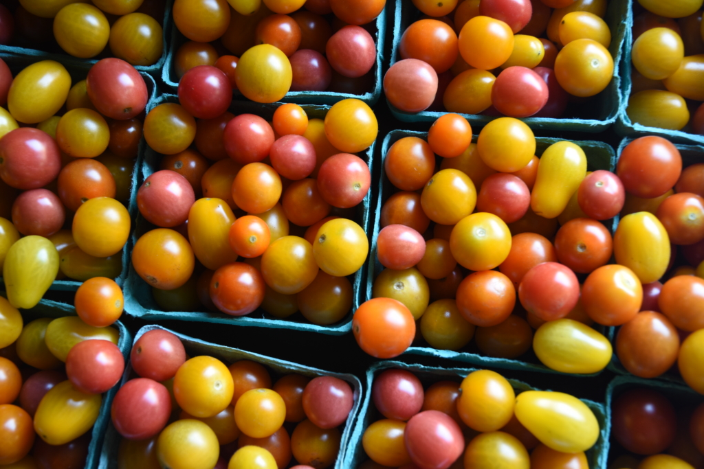 Good Food Box tomatoes